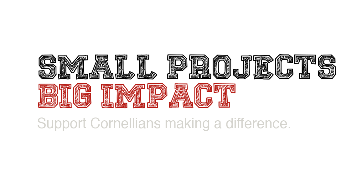 Small Pojects Big Impact