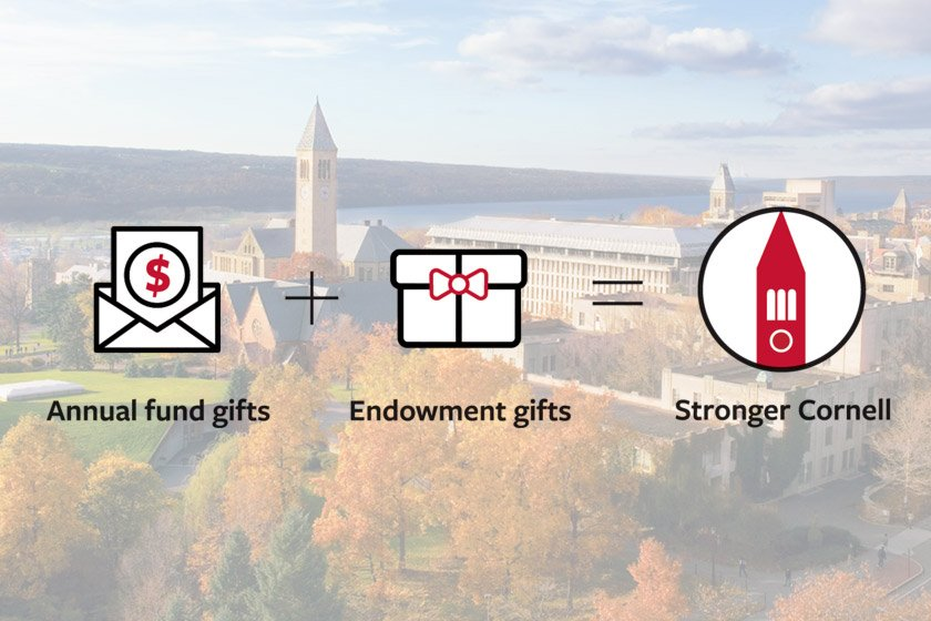 Annual fund gifts plus endowment gifts make a stronger Cornell