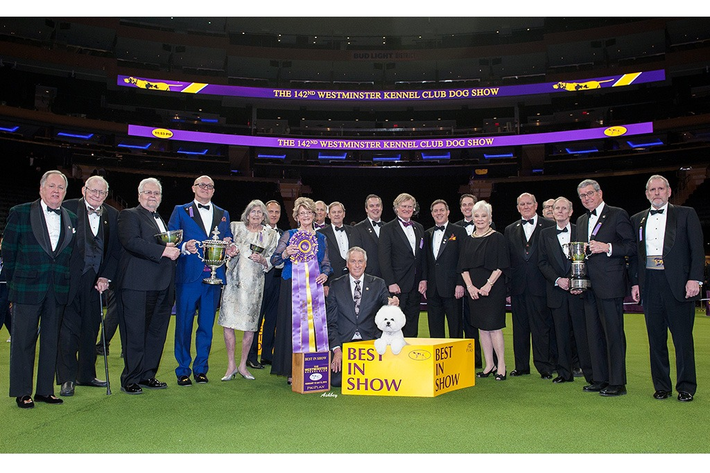 142nd Annual Westminster Club Dog Show with Best in Show Winner